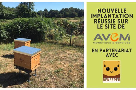 Deux nouvelles ruches connectées sur notre site de Vannes